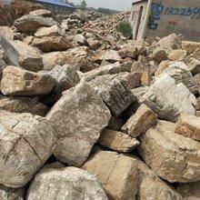 南京千层石供应商图片