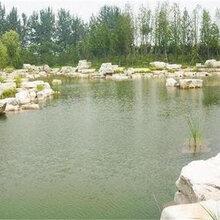 西安河道护坡设计公司图片