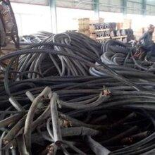 上海電纜回收服務熱線圖片