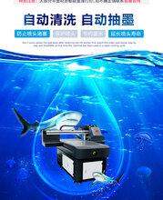 31度6090自主研发万能UV打印机