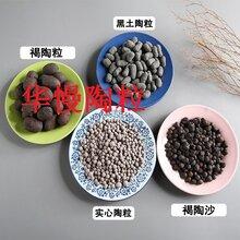 云南陶粒混凝土///云南曝气池用生物陶粒滤料厂家157-0554-4388图片