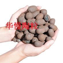 青岛陶粒,工程轻质陶粒作用,华慢陶粒厂157-0554-4388图片