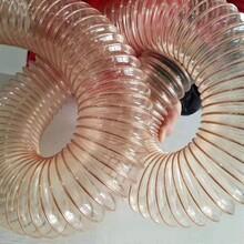 pu钢丝软管采用PUR材料生产的软管具有抗拉伸、张力强、耐磨损图片