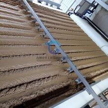 广东云浮小型带式压滤机定制泥浆压泥机报价图片