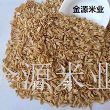 山东直销优质稻壳济宁稻壳厂家批发无尘多用处稻壳图片