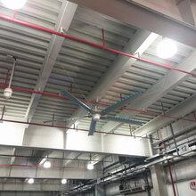 广东工业风扇生产厂家