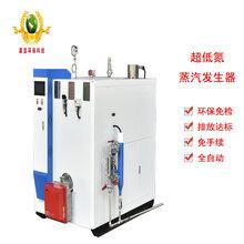 小型包子豆腐豆制品廠用環保燃氣蒸汽鍋爐蒸汽發生器