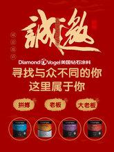 進口乳膠漆美國鉆石涂料DS15533D彈性膚感涂料性價比最高免費加盟