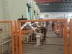 莆田沖壓機器人生產廠家
