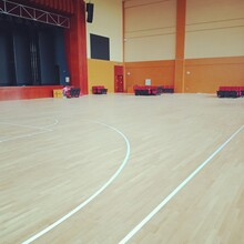 年度運動地板!長春吉奧體育運動實木地板!,排球木地板圖片