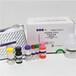 風疹病毒IgG抗體檢測試劑盒酶聯免疫法