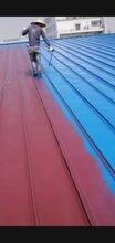 苏州园区钢结知道构喷防火涂料彩钢板除锈喷漆翻新彩钢板漏♀雨维修图片