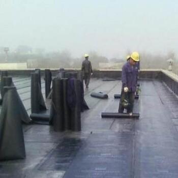 无锡彩钢瓦除锈喷漆无锡彩钢板更换翻新厂房漏水维修补漏