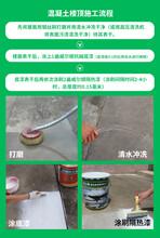 蘇州園區廠房屋面隔熱涂料施工彩鋼瓦隔熱涂料涂刷圖片