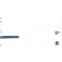 金屬/非金屬自承式皮線光纜