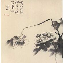 瓷器征集保真收購私人博物館鑒寶海選圖片