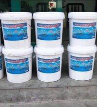 水产养殖二氧化氯消毒剂水产消毒含量10图片