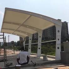 浙江膜结构停车棚厂家,厂家热线图片