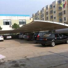 上海膜结构停车棚厂家,厂家直销图片
