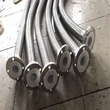 加工衬四氟金属软管高压金属软管不锈钢金属软管质量保证图片