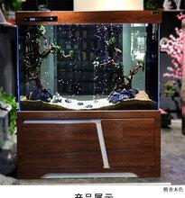 哪里买鱼缸好_鱼缸图片和价格
