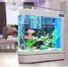 鱼缸开店销售指导_大型玻璃鱼缸厂家