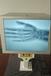 聊城便攜式X射線機供應