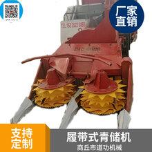 深圳履带式青储机-厂家销售