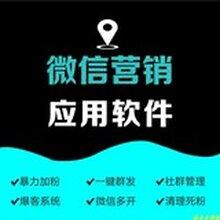 潍坊网络公司购物小程序商城