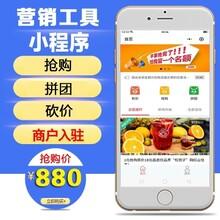 山东潍坊网站设计返利会员礼包商城开发图片