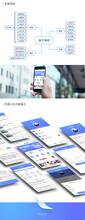 山东潍坊网站开发商城开发平台图片