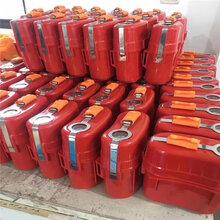 现货供应煤矿ZYX30压缩氧气自救器30分钟45分钟图片