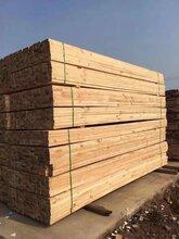 辐射松加工辐射松方木建筑方木木材加工图片