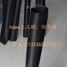养殖鱼塘防渗土工膜水池防渗膜HDPE土工膜