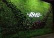 仿真植物墻綠植墻面草皮室內墻壁裝飾綠色草坪塑料假花形象背景墻