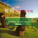 東莞國際空運駱駝(跨境)物流智利郵政小包專線妥投率高,智利電商小包