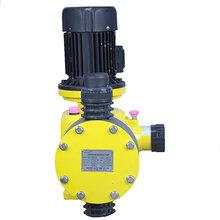 总代理JDM-1500/0.3大流量机械隔膜计量泵/AILIPU选型图片