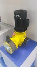 JDM-1000/0.3機械隔膜計量泵銷售選型圖片