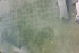陜西黑臭水體生態修復工程專用底質改良劑