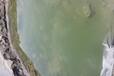 廣東河道生態修復工程沉水植物促根保根促生劑