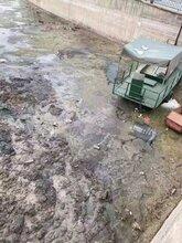 浙江河道黑臭水體治理工程底質改良劑圖片