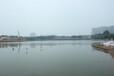 上海水生態修復工程水質改良微生物制劑