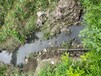 陜西黑臭水體治理原位底泥生物固化