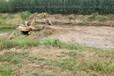 湖北污染土壤微生物固化穩定技術