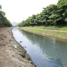 广东水生态修复底泥矿物固化生物制剂图片