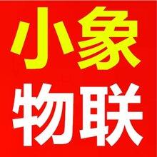 河南郑州代理小象物联卡小象通信流量