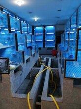 珠海海鲜池定做移动海鲜池定做鱼缸制冷
