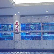 东莞广场海鲜池三层海鲜池不锈钢架玻璃海鲜池定做