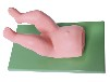 婴儿髋关节复位训练模型