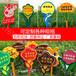 綠化帶警示牌懸掛式花草牌愛護花草提示牌廣告牌定制草地牌
